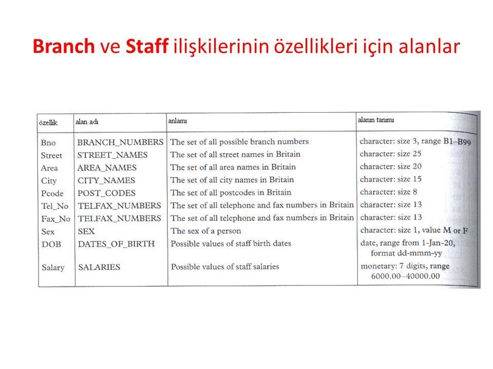 Branch ve Staff ilişkilerinin özellikleri için alanlar