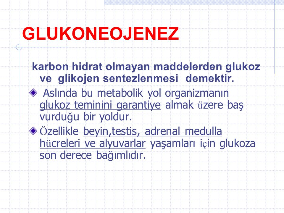 Glukonegenez Prof.Dr.Sabahattin Muhtaroğlu