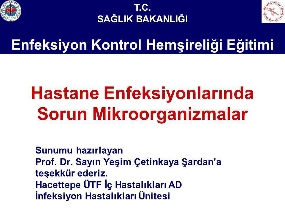 Sağlık Bakanlığı Enfeksiyon Kontrol Hemşireliği Eğitimi Hastane Enfeksiyonlarında Sorun Mikroorganizmalar Sunumu hazırlayan Prof. Dr. Sayın Yeşim Çeti