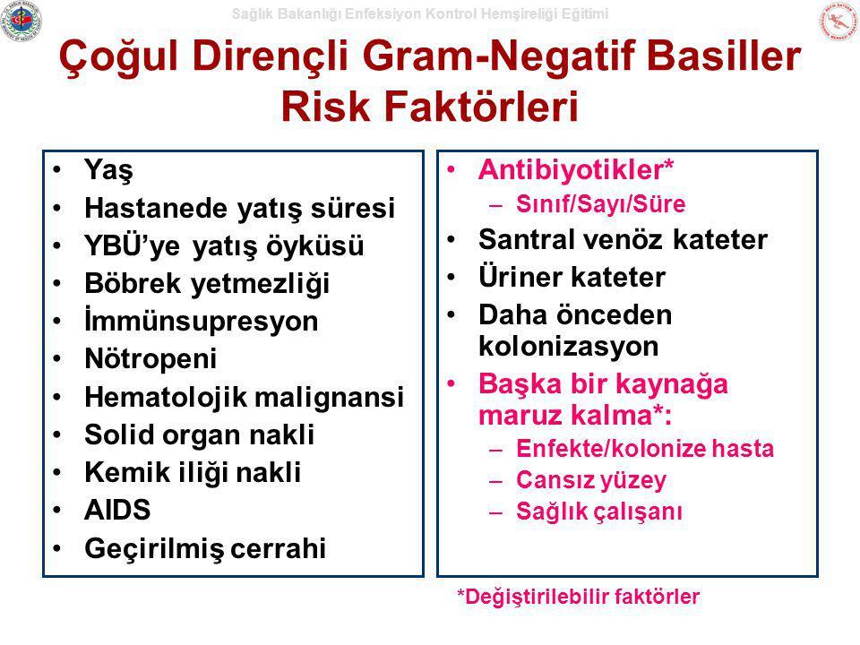 Çoğul Dirençli Gram-Negatif Basiller Risk Faktörleri Yaş Hastanede yatış süresi YBÜ'ye yatış öyküsü Böbrek yetmezliği İmmünsupresyon Nötropeni Hematol