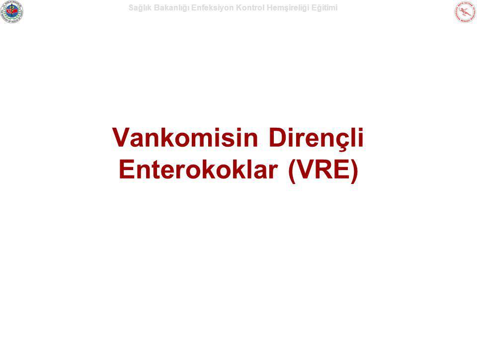 Vankomisin Dirençli Enterokoklar (VRE)