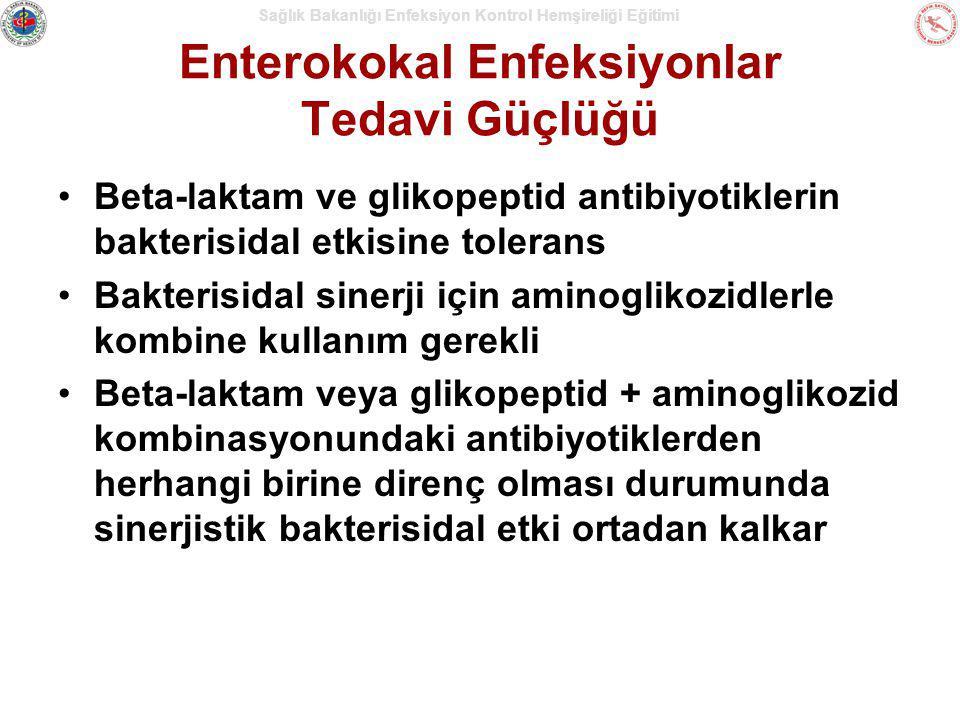 Sağlık Bakanlığı Enfeksiyon Kontrol Hemşireliği Eğitimi Enterokokal Enfeksiyonlar Tedavi Güçlüğü Beta-laktam ve glikopeptid antibiyotiklerin bakterisi