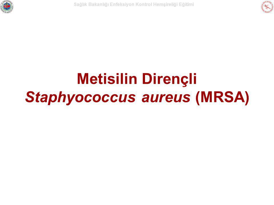 Sağlık Bakanlığı Enfeksiyon Kontrol Hemşireliği Eğitimi Metisilin Dirençli Staphyococcus aureus (MRSA)