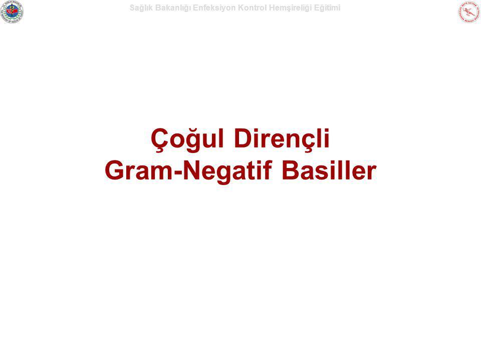 Çoğul Dirençli Gram-Negatif Basiller