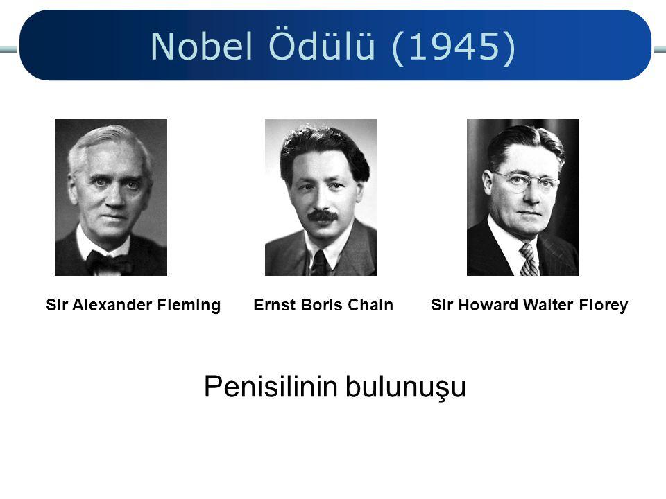 Nobel Ödülü (1945) Sir Alexander Fleming Ernst Boris Chain Sir Howard Walter Florey Penisilinin bulunuşu