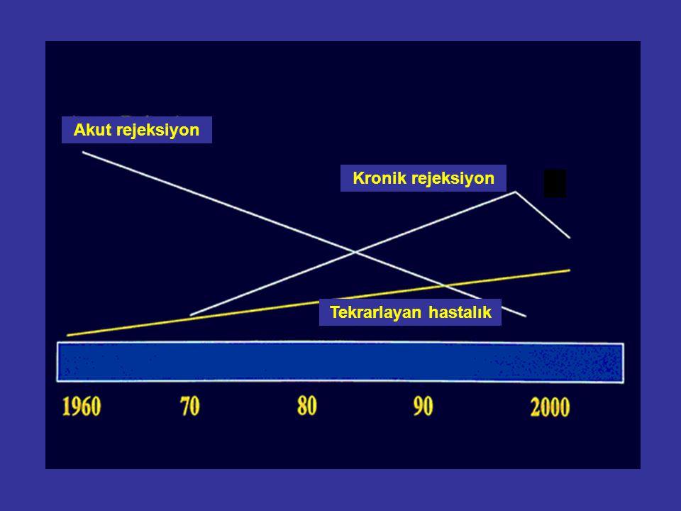 Tekrarlayan hastalık Kronik rejeksiyon Akut rejeksiyon