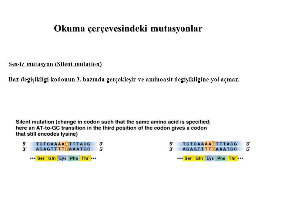 Sessiz mutasyon (Silent mutation) Baz değişikliği kodonun 3. bazında gerçekleşir ve aminoasit değişikliğine yol açmaz. Okuma çerçevesindeki mutasyonla