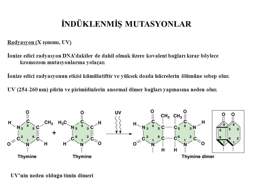 Radyasyon (X ışınımı, UV) İonize edici radyasyon DNA'dakiler de dahil olmak üzere kovalent bağları kırar böylece kromozom mutasyonlarına yolaçar. İoni