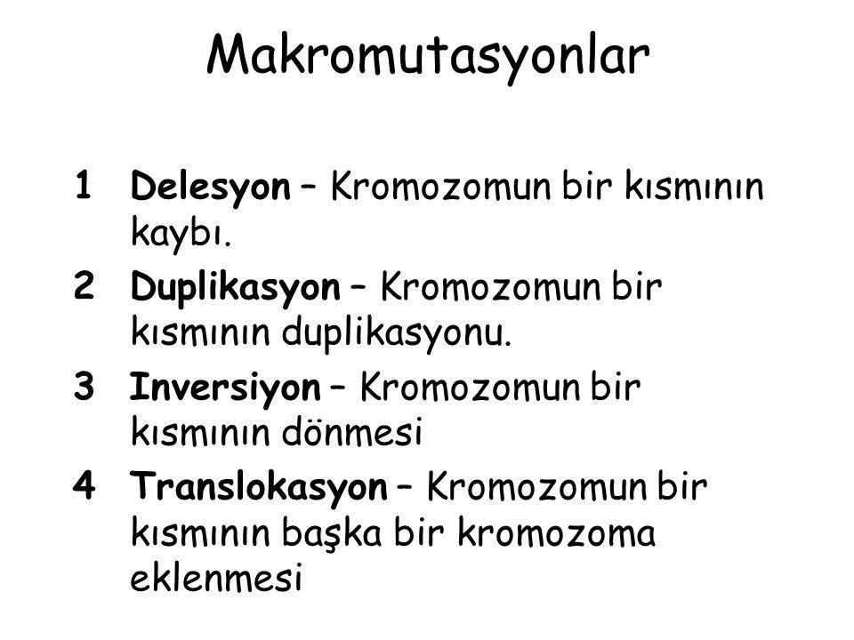 Makromutasyonlar 1Delesyon – Kromozomun bir kısmının kaybı. 2Duplikasyon – Kromozomun bir kısmının duplikasyonu. 3Inversiyon – Kromozomun bir kısmının