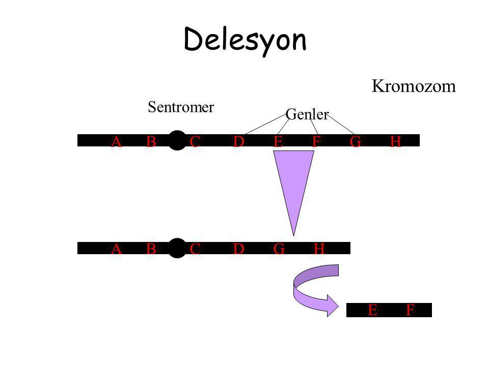 Delesyon Kromozom Sentromer A B C D E F G H Genler E F A B C D G H