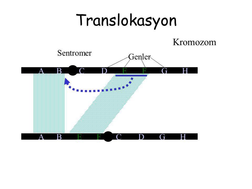 Translokasyon A B E F C D G H Kromozom Sentromer Genler A B C D E F G H