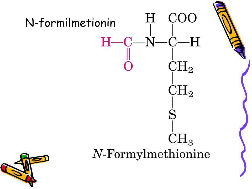 N-formilmetionin