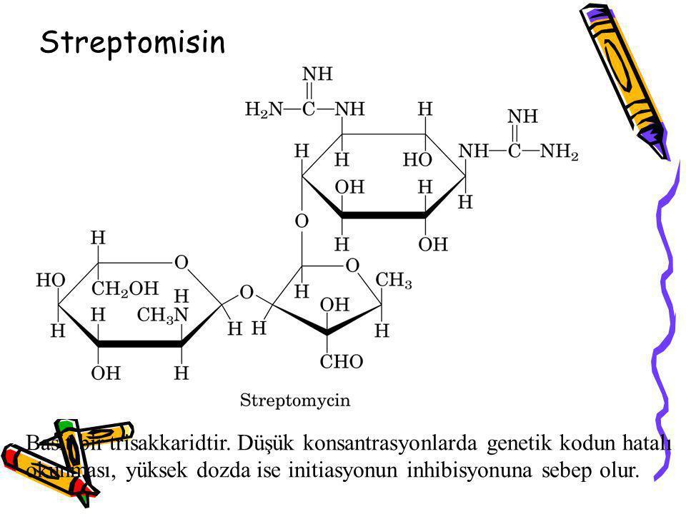Streptomisin Basit bir trisakkaridtir. Düşük konsantrasyonlarda genetik kodun hatalı okunması, yüksek dozda ise initiasyonun inhibisyonuna sebep olur.