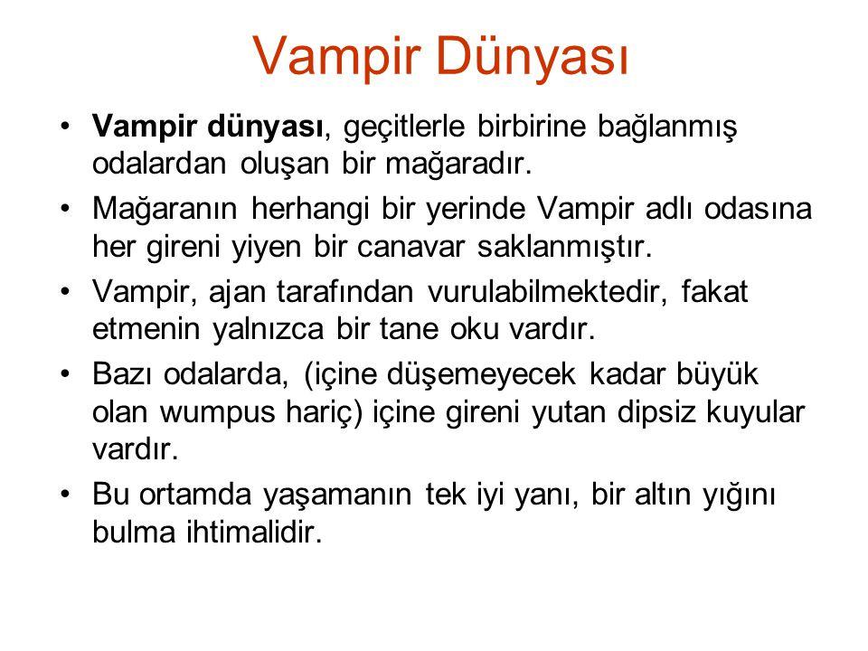 Vampir Dünyası Vampir dünyası, geçitlerle birbirine bağlanmış odalardan oluşan bir mağaradır. Mağaranın herhangi bir yerinde Vampir adlı odasına her g