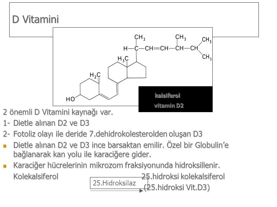 2 önemli D Vitamini kaynağı var.