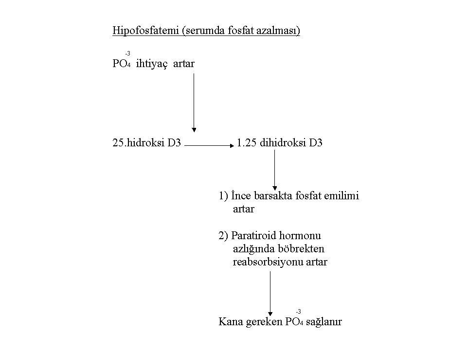 D Vit Eksikliği - RAŞİTİZM (Çocuklarda görülür) - OSTEOMALAZİ (Büyüklerde) - Yaşlılarda 7.dehidrokolesterolun D3 dönüşümü (derideki fotoliz) azalır.