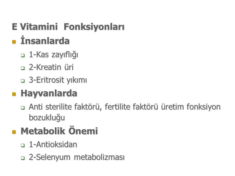 E Vitamini Fonksiyonları İnsanlarda İnsanlarda  1-Kas zayıflığı  2-Kreatin üri  3-Eritrosit yıkımı Hayvanlarda Hayvanlarda  Anti sterilite faktörü, fertilite faktörü üretim fonksiyon bozukluğu Metabolik Önemi Metabolik Önemi  1-Antioksidan  2-Selenyum metabolizması