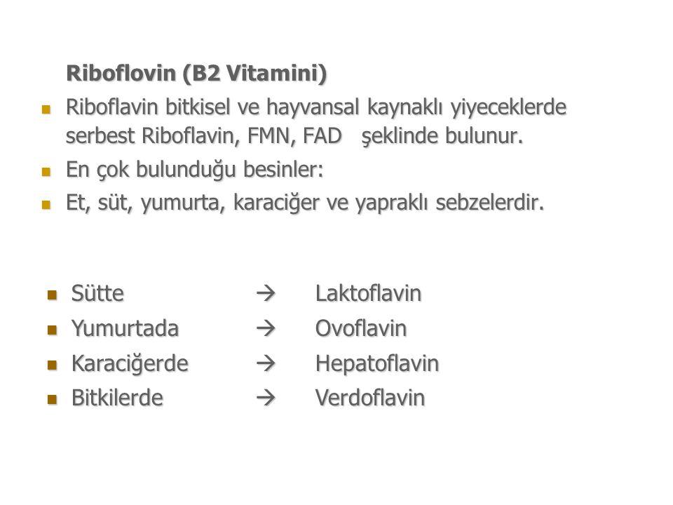 Riboflovin (B2 Vitamini) Riboflavin bitkisel ve hayvansal kaynaklı yiyeceklerde serbest Riboflavin, FMN, FAD şeklinde bulunur.