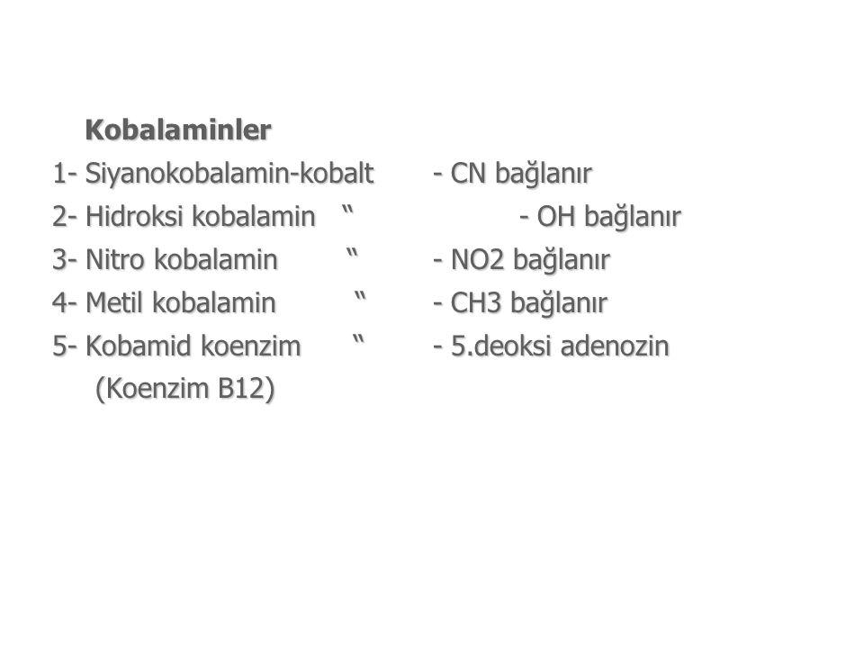 Kobalaminler 1- Siyanokobalamin-kobalt - CN bağlanır 2- Hidroksi kobalamin - OH bağlanır 3- Nitro kobalamin - NO2 bağlanır 4- Metil kobalamin - CH3 bağlanır 5- Kobamid koenzim - 5.deoksi adenozin (Koenzim B12) (Koenzim B12)