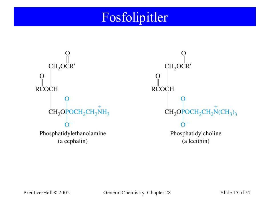 Prentice-Hall © 2002General Chemistry: Chapter 28Slide 15 of 57 Fosfolipitler