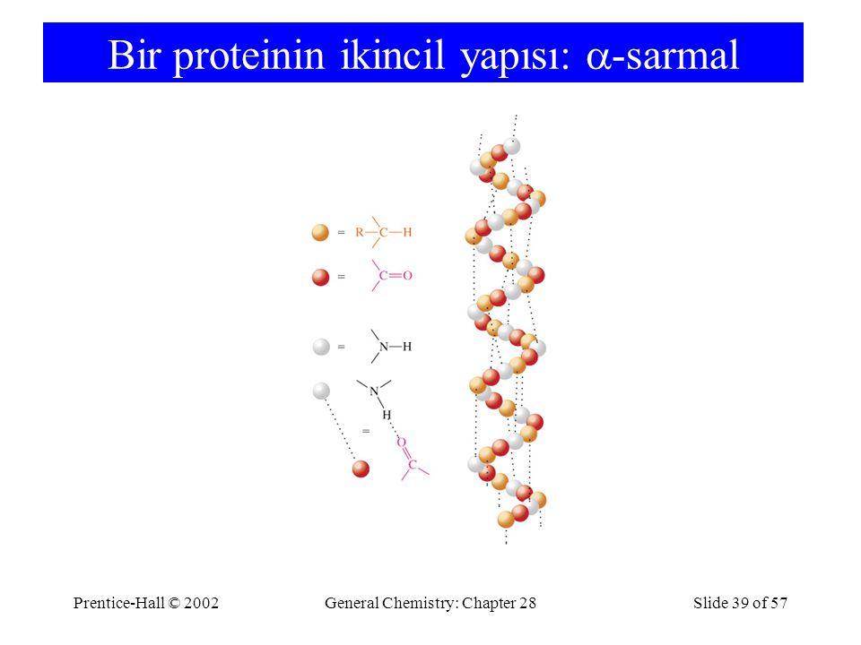 Prentice-Hall © 2002General Chemistry: Chapter 28Slide 39 of 57 Bir proteinin ikincil yapısı:  -sarmal