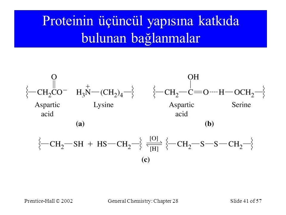 Prentice-Hall © 2002General Chemistry: Chapter 28Slide 41 of 57 Proteinin üçüncül yapısına katkıda bulunan bağlanmalar