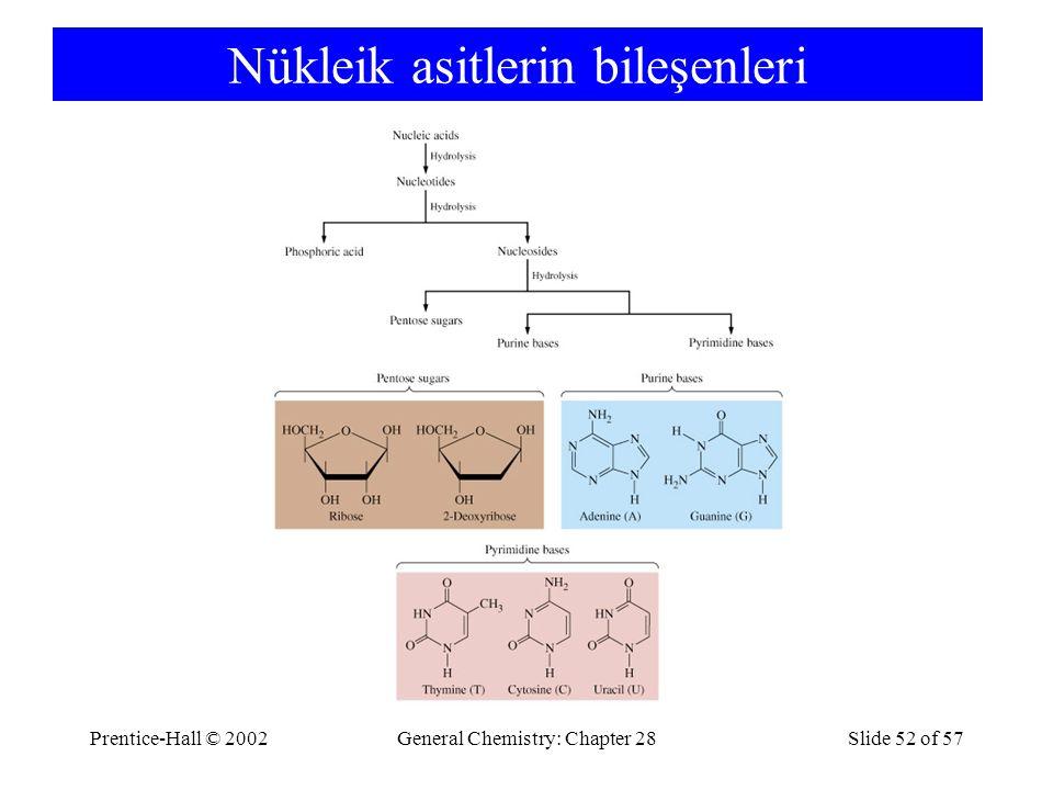 Prentice-Hall © 2002General Chemistry: Chapter 28Slide 52 of 57 Nükleik asitlerin bileşenleri