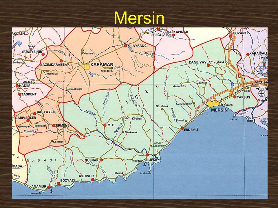 www.yunusemrecosan.com Mersin