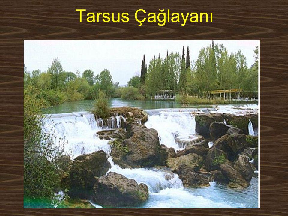 www.yunusemrecosan.com Tarsus Çağlayanı