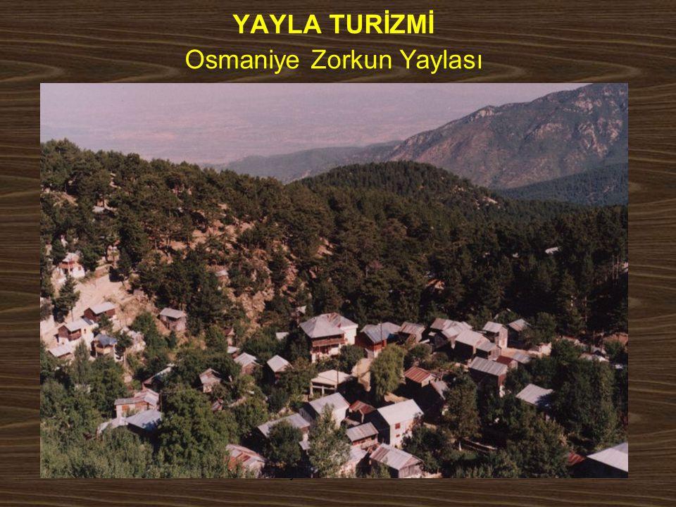 www.yunusemrecosan.com YAYLA TURİZMİ Osmaniye Zorkun Yaylası