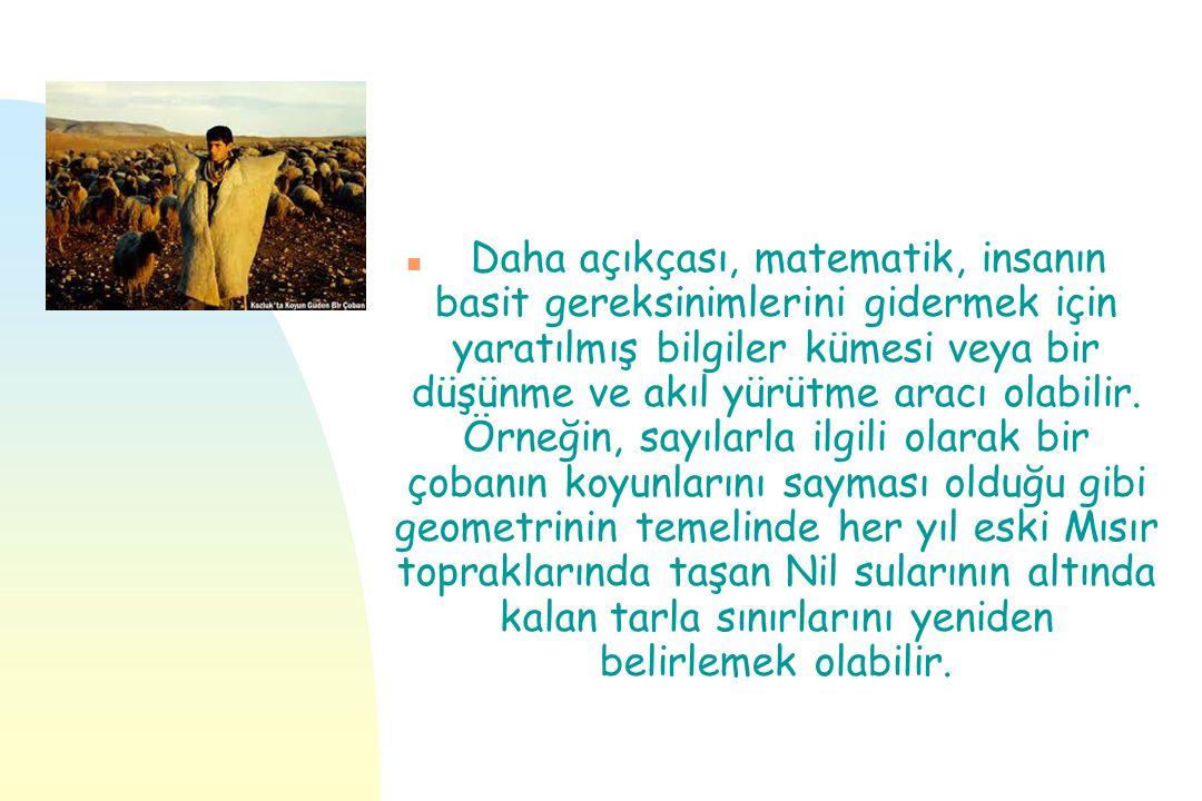 n Türkiye yüksek öğretiminde matematik ve matematiksel bilim dersleri birçok fakülte ve bölüm ders paketleri içinde yoktur.