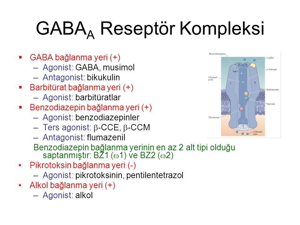 GABA A Reseptör Kompleksi  GABA bağlanma yeri (+) –Agonist: GABA, musimol –Antagonist: bikukulin  Barbitürat bağlanma yeri (+) –Agonist: barbitüratlar  Benzodiazepin bağlanma yeri (+) –Agonist: benzodiazepinler –Ters agonist:  -CCE,  -CCM –Antagonist: flumazenil Benzodiazepin bağlanma yerinin en az 2 alt tipi olduğu saptanmıştır: BZ1 (  1) ve BZ2 (  2) Pikrotoksin bağlanma yeri (-) –Agonist: pikrotoksinin, pentilentetrazol Alkol bağlanma yeri (+) –Agonist: alkol
