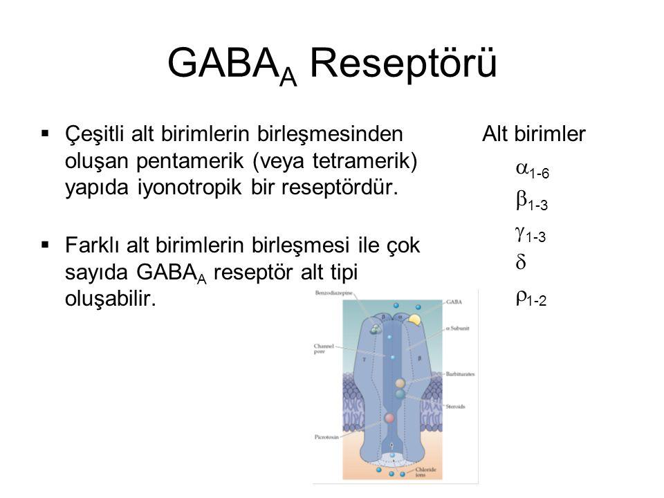GABA A Reseptörü Beynin bir çok bölgesinde bulunan ana GABA A reseptör izoformu iki  1 iki  2 ve bir  2 alt birimi içerir.