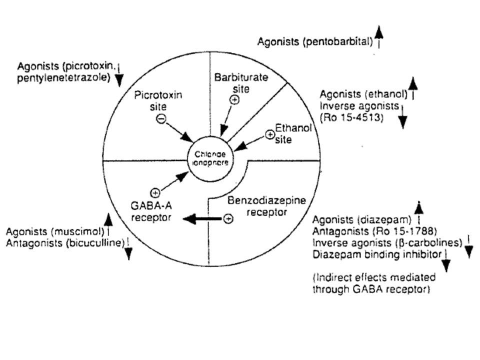 Uzun etki süreli DiazepamAnk., Ak.Prototip BZ dir, en hızlı absorbe edilen BDZ KlordiazepoksidAnk.