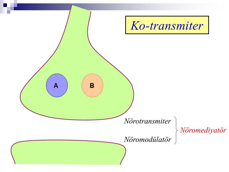 AB Nörotransmiter Nöromodülatör Nöromediyatör Ko-transmiter