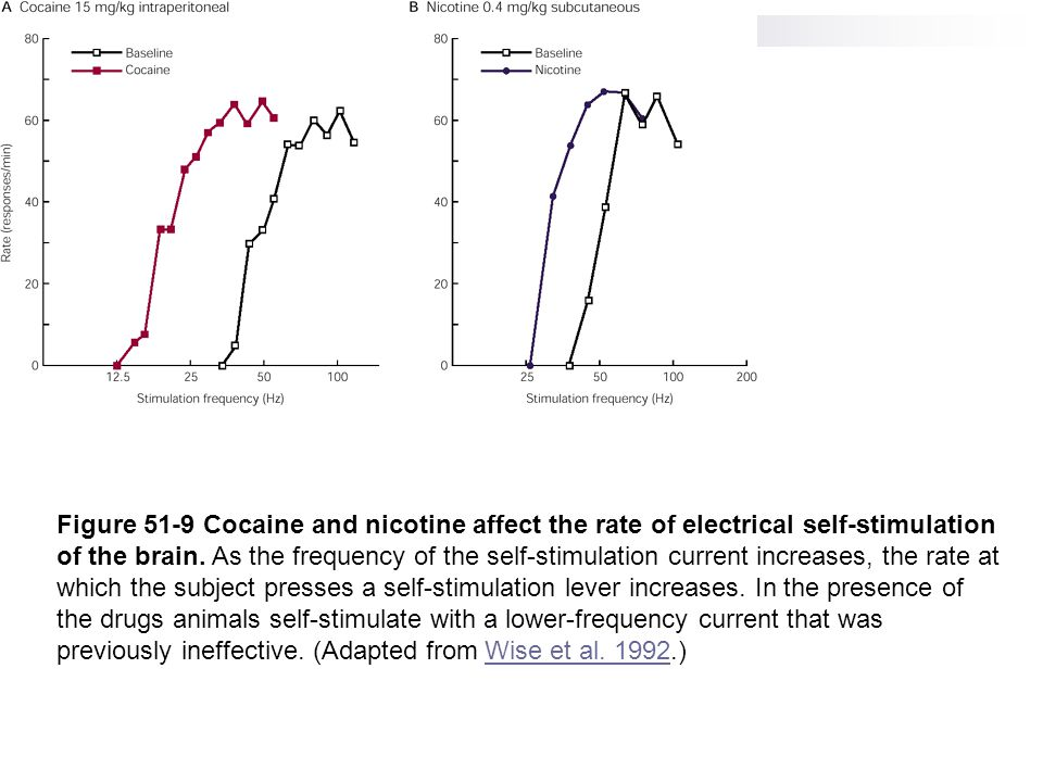 Figure 51-9 Cocaine and nicotine affect the rate of electrical self-stimulation of the brain. As the frequency of the self-stimulation current increas