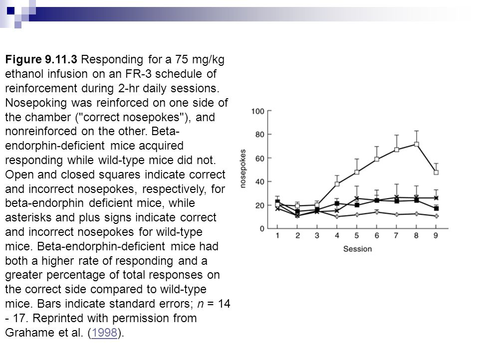 Figure 9.11.3 Responding for a 75 mg/kg ethanol infusion on an FR-3 schedule of reinforcement during 2-hr daily sessions.