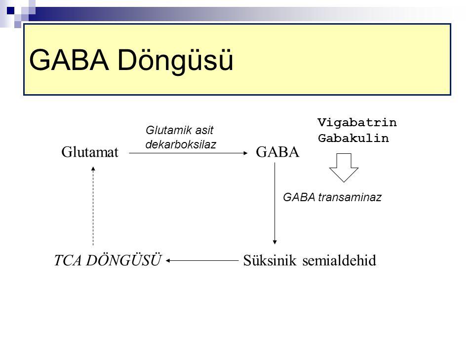 GlutamatGABA Süksinik semialdehid GABA transaminaz TCA DÖNGÜSÜ Glutamik asit dekarboksilaz Vigabatrin Gabakulin GABA Döngüsü