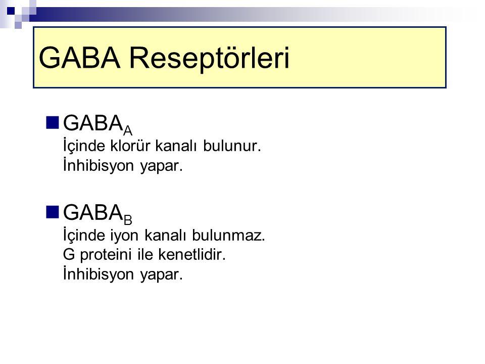 GABA Reseptörleri GABA A İçinde klorür kanalı bulunur.
