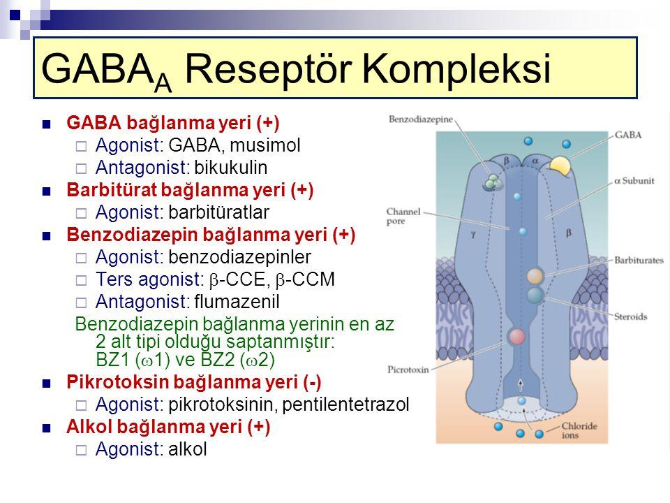GABA A Reseptör Kompleksi GABA bağlanma yeri (+)  Agonist: GABA, musimol  Antagonist: bikukulin Barbitürat bağlanma yeri (+)  Agonist: barbitüratlar Benzodiazepin bağlanma yeri (+)  Agonist: benzodiazepinler  Ters agonist:  -CCE,  -CCM  Antagonist: flumazenil Benzodiazepin bağlanma yerinin en az 2 alt tipi olduğu saptanmıştır: BZ1 (  1) ve BZ2 (  2) Pikrotoksin bağlanma yeri (-)  Agonist: pikrotoksinin, pentilentetrazol Alkol bağlanma yeri (+)  Agonist: alkol