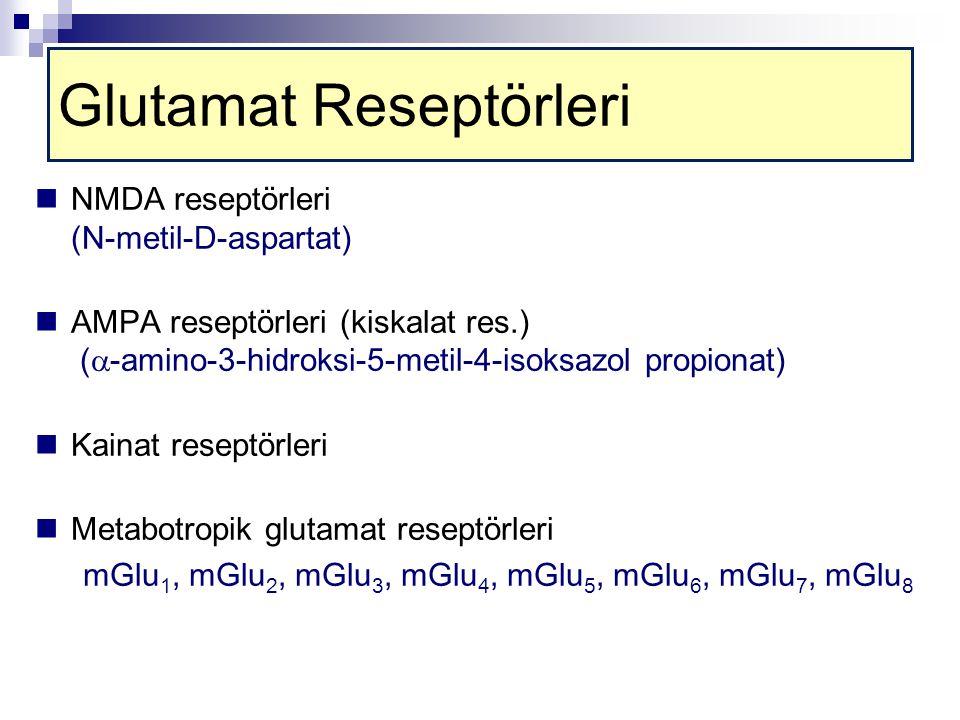 Glutamat Reseptörleri NMDA reseptörleri (N-metil-D-aspartat) AMPA reseptörleri (kiskalat res.) (  -amino-3-hidroksi-5-metil-4-isoksazol propionat) Kainat reseptörleri Metabotropik glutamat reseptörleri mGlu 1, mGlu 2, mGlu 3, mGlu 4, mGlu 5, mGlu 6, mGlu 7, mGlu 8