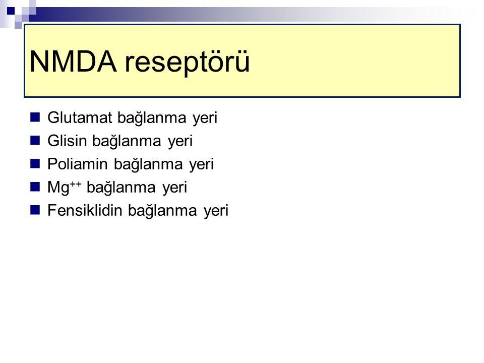 NMDA reseptörü Glutamat bağlanma yeri Glisin bağlanma yeri Poliamin bağlanma yeri Mg ++ bağlanma yeri Fensiklidin bağlanma yeri