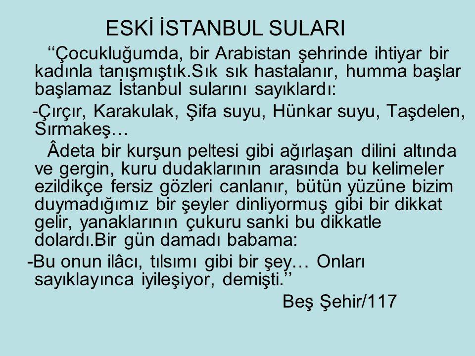 ESKİ İSTANBUL SULARI ''Çocukluğumda, bir Arabistan şehrinde ihtiyar bir kadınla tanışmıştık.Sık sık hastalanır, humma başlar başlamaz İstanbul suların
