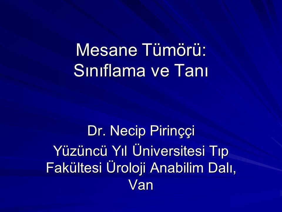 Mesane Tümörü: Sınıflama ve Tanı Dr. Necip Pirinççi Yüzüncü Yıl Üniversitesi Tıp Fakültesi Üroloji Anabilim Dalı, Van