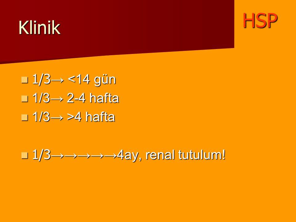 Klinik 1/3 → <14 gün 1/3 → <14 gün 1/3→ 2-4 hafta 1/3→ 2-4 hafta 1/3→ >4 hafta 1/3→ >4 hafta 1/3 →→→→→4ay, renal tutulum! 1/3 →→→→→4ay, renal tutulum!