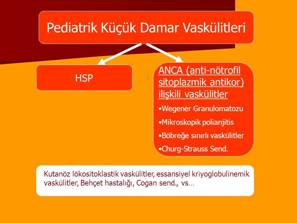 Pediatrik Küçük Damar Vaskülitleri HSP ANCA (anti-nötrofil sitoplazmik antikor) ilişkili vaskülitler Wegener Granulomatozu Mikroskopik polianjitis Böb