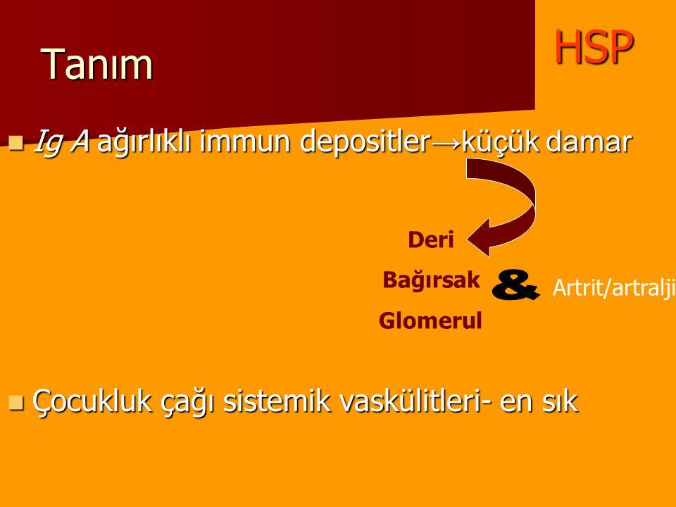 Tanım Ig A ağırlıklı immun depositler →küçük damar Ig A ağırlıklı immun depositler →küçük damar Çocukluk çağı sistemik vaskülitleri- en sık Çocukluk ç