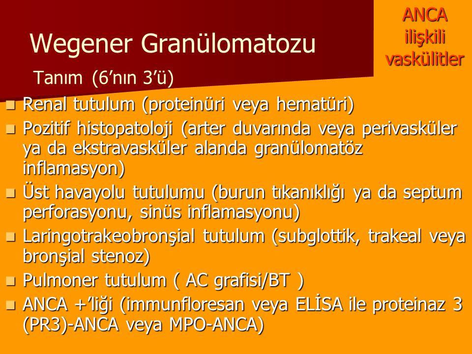 Wegener Granülomatozu Tanım (6'nın 3'ü) Renal tutulum (proteinüri veya hematüri) Renal tutulum (proteinüri veya hematüri) Pozitif histopatoloji (arter