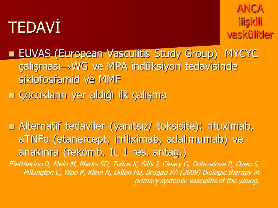 TEDAVİ EUVAS (European Vasculitis Study Group) MYCYC çalışması → WG ve MPA indüksiyon tedavisinde siklofosfamid ve MMF EUVAS (European Vasculitis Stud