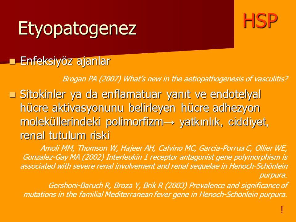 Etyopatogenez Enfeksiyöz ajanlar Enfeksiyöz ajanlar Brogan PA (2007) What's new in the aetiopathogenesis of vasculitis? Sitokinler ya da enflamatuar y
